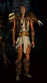 Прокачка друида в Diablo 2