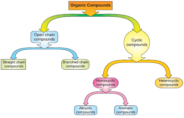 identifying organic compounds in foods Identifying organic compounds lab objective: the objective is to use indicators to test for the presence of organic compounds theory: the major types of organic compounds in some common foods are proteins, carbohydrates, lipids, and nucleic acids.
